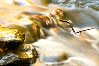 Water in Motion - Catoctin Mt. Maryland